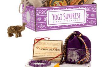 Yogi Surprise Coupon – 25% Off First Box!