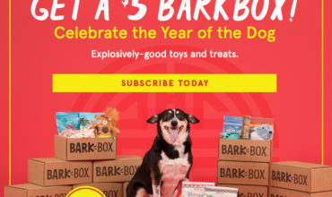 BarkBox Coupon – Get Your First Box For Only $5!