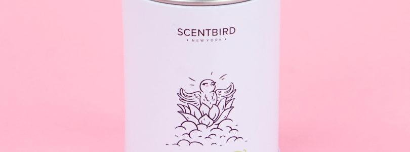 Scentbird coupon code 2018