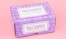 Yogi Surprise Lifestyle Box Review – March 2018 + Coupon!