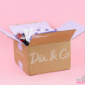 Dia & Co Clothing Subscription Box Review – April 2018
