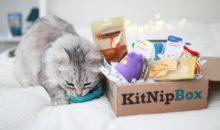 KitNipBox Coupon – Save 15% Off Your First Box!