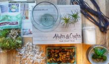 Adults & Crafts Coupon – FREE Shipping On Your First Box!