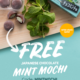 TokyoTreat Coupon – FREE Mint Mochi!