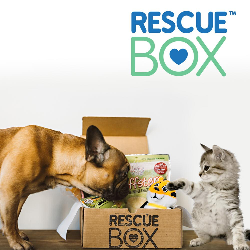 RescueBox Review