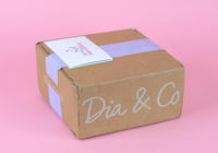 Dia & Co. Plus Size Clothing Subscription Box Review – August 2018