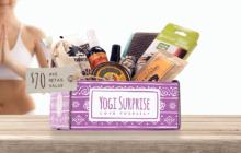 Yogi Surprise July 2019 Spoilers + Coupon!