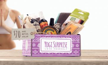 Yogi Surprise Spoilers