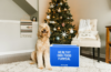 Pet Plate Coupon – Save 60% Off Your First Box!