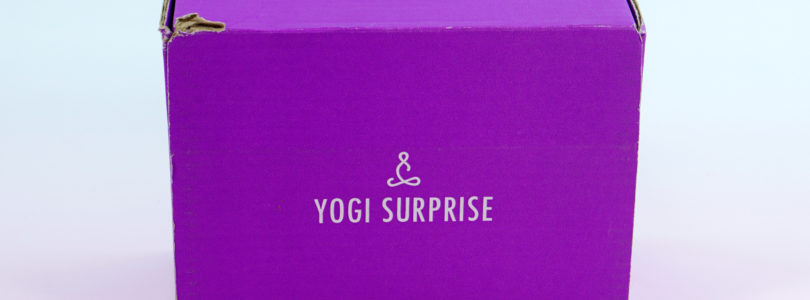 Yogi Surprise December 2018 Lifestyle Box Review + FREE Box Coupon!