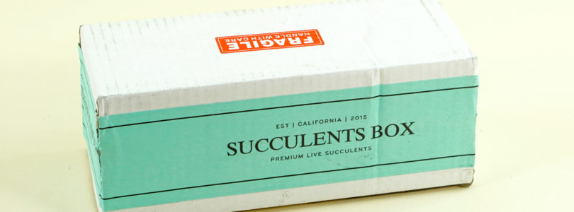 Succulents Box Review + Coupon – January 2019