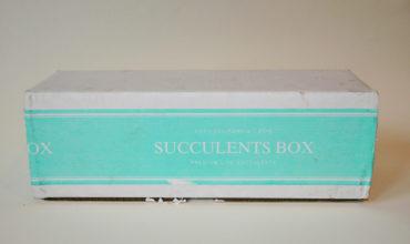 Succulents Box Review + Coupon – March 2019