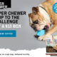 Super Chewer Coupon – Get Your First Box For $15!