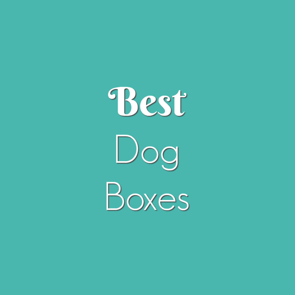 Best Dog Boxes