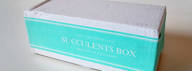 Succulents Box Review + Coupon – April 2019