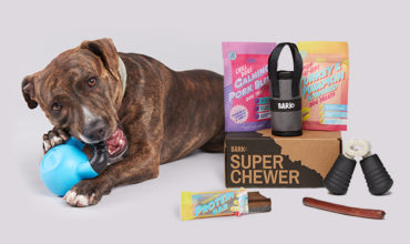 Super Chewer Coupon – Save 50% Off Your First Box!