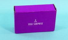 Yogi Surprise Jewelry Box Review + Coupon – May 2019