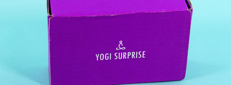 Yogi Surprise Jewelry Box Review + Coupon – May 2019