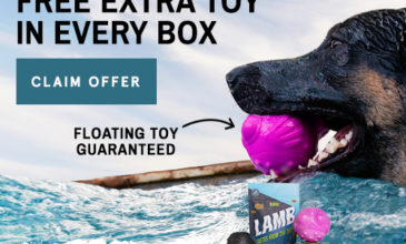 Super Chewer Coupon – Get Free Bonus Toy Every Month!