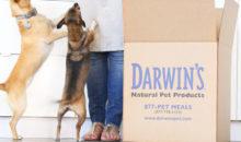 Darwin's pet food coupon