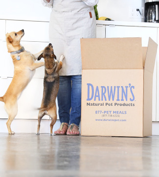 Darwin's pet food coupon