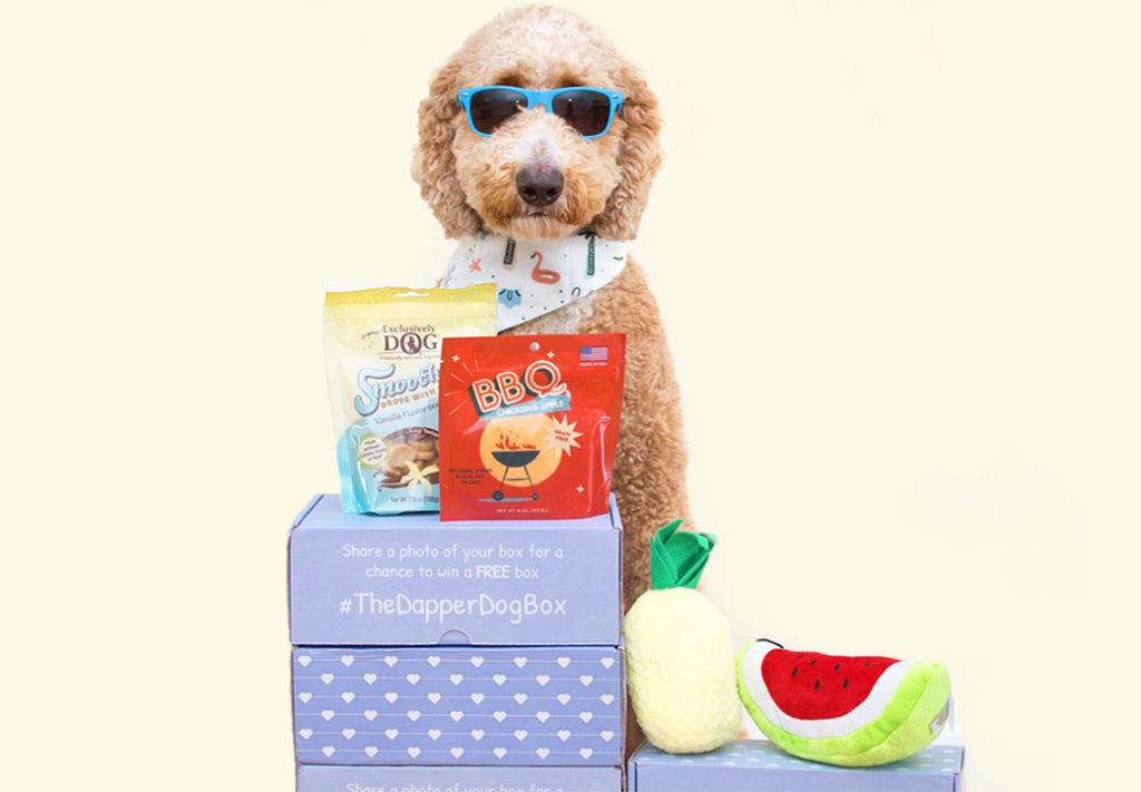 Dapper Dog Box Review