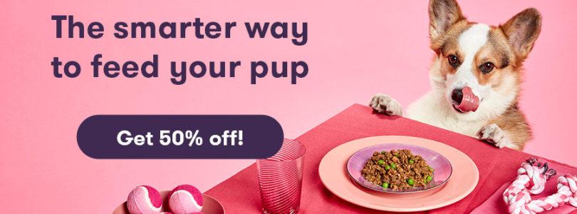 Ollie dog food coupon