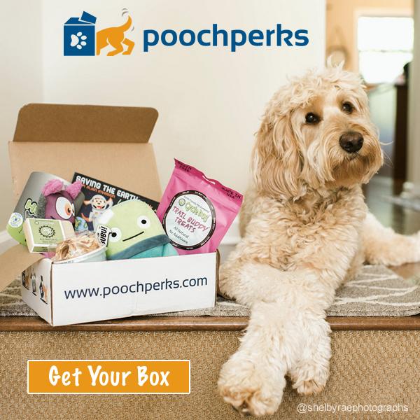 Pooch Perks Review