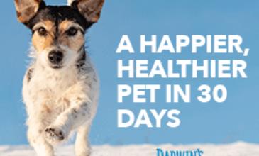 Darwin's Natural Pet Food Coupon – Save 75% Off Your First Box!