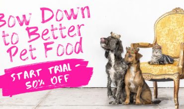 Darwin's Black Friday Deal – Get 50% Off Your First Box!