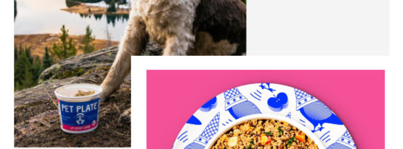 Pet Plate Coupon – Get 75% Off Your First Box!