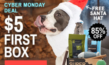 Super Chewer Cyber Monday Deal – First Box $5 + FREE Santa Hat!