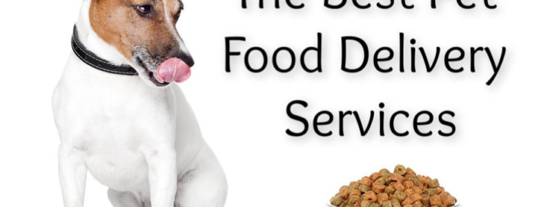 The Best Pet Food Delivery Services