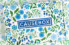 Causebox Spring 2020 Welcome Box Available Now + Spoilers!
