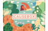 Causebox Summer 2020 Welcome Box Spoilers